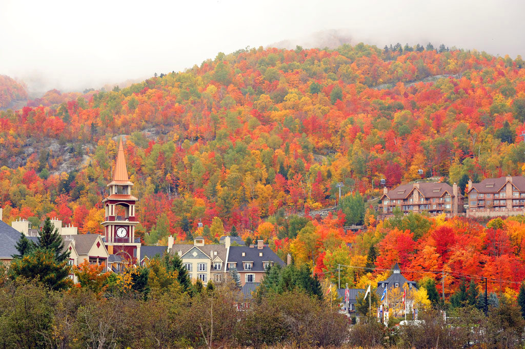 View fall foliage at Mont Tremblant